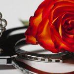 手錠と薔薇