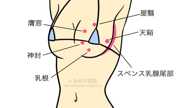 胸の性感帯